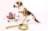애완 동물 제품 공급 개 형광 하네스 (H010)