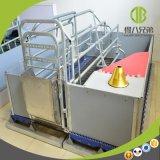 Caixa de parada galvanizada para o equipamento da gaiola do porco da porca