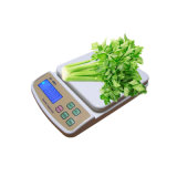 Balanza de la escala electrónica de la cocina de Digitaces Paltform