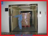 Levage de marchandises bon marché de levage de cargaison de fret d'ascenseur de véhicule à vendre