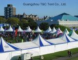 Большой смешанный шатер шатёр венчания партии для свадебного банкета в Южной Африке