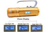 Power Displayの15W Portable Outdoor Highlight LED Fishing Light