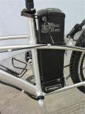 Vélo électrique de vente montagne modèle classique chaude de mode de grosse