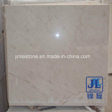 Floor Tile Slab를 위한 자연적인 Granite/Travertine/Marble