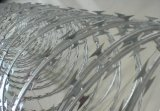 Колючая проволока бритвы фабрики оптовая сделанная в Китае