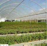 Парник листа PC земледелия для овощей/цветков