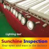 Качественный контрол света светильника ландшафта/финальная инспекция