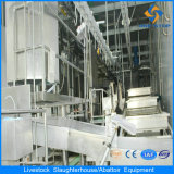 Cattle Slaughter Line Synchronous Quarantine Conveyor