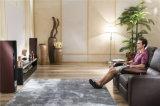 Le sofa de salle de séjour avec le sofa moderne de cuir véritable a placé (800)
