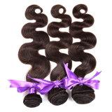 Le estensioni dei capelli del Virgin di Ombre 4 gruppi del grado 7A del Virgin dei capelli del corpo dell'onda di Ombre del tessuto brasiliano dei capelli umani impacchetta il 1b 4 27#
