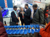 Fisch-Gurke-Huhn für SUS316, das Nahrungsmittelmaschine sortiert