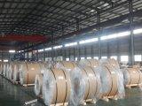 Warm gewalzter Aluminiumring (6061 6082)
