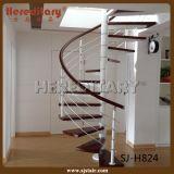 Acero inoxidable Rod que cerca la escalera con barandilla espiral (SJ-S030)