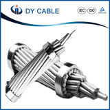 Qualité tous les conducteur/constructeur/fournisseur en aluminium du câble AAC