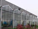パソコンのPolybonateの庭の温室キットはとの鉄骨フレームを補強する