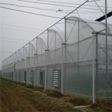 Gutter Connected Greenhouse with Plastic Polythene Film, Zigzag / Sawtooth Serre Fro Farming
