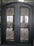بسيطة [فرنش] حديد يصمّم أبواب أماميّة مدخل أمن حديد أبواب