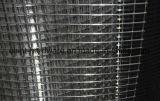 良質のベストセラーの溶接された鉄の金網
