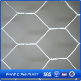 Engranzamento de fio sextavado do engranzamento do aço inoxidável 0.3mm X30mm na venda