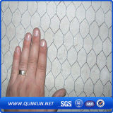 Rete metallica esagonale della maglia dell'acciaio inossidabile 0.3mm X30mm sulla vendita