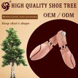 Civière en bois lisse de chaussure, arbre de chaussure