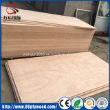 madera contrachapada comercial laminada Okoume enarenada doble de 18m m para los guardarropas