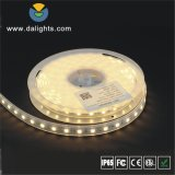 Indicatore luminoso di striscia impermeabile di SMD5050 LED