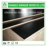 Schwarzes Film Faced 4X8 Feet Construction Plywood