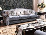 Классицистическая софа ткани для живущий мебели комнаты