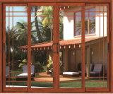 Doppio portello scorrevole di vetro di profilo 6063-T5 della lega di alluminio di disegno