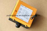 Industrielles drahtloses Radiofernsteuerungs der Fabrik-F21-6D für Brücke, obenliegenden, mobilen, EOT-Kran, usw.