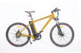 Vélo modèle classique de la montagne E avec du ce