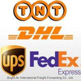 中国からのスリナムへの貨物トラック運送会社の速達便の貨物キャリア
