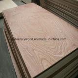 Bintangor cara y la espalda, BB / CC madera contrachapada de grado