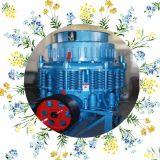 Frantoio principale Manufecturer (PYB/PYD) del cono della Cina