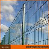 Покрынная PVC изогнутая сваренная загородка ячеистой сети