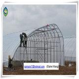 성장하고 있는 오이를 위한 Hydroponic 시스템 중국 공장 가격 플레스틱 필름 온실