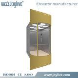 Elevación de lujo de la elevación redonda de cristal a la vista del elevador