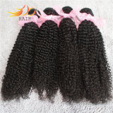 Estensione crespa dei capelli dell'arricciatura di prezzi dei capelli Burmese non trattati poco costosi del Virgin
