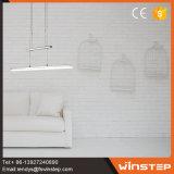 Quente-Vendendo a lâmpada moderna do pendente da câmara de ar da decoração Home