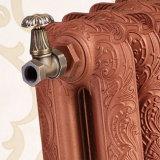 Подгонянный ретро Aulic радиатор топления украшения дома чугуна картины