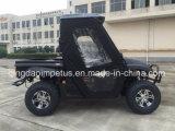 Recentste Populaire AC van het Ontwerp Motor 5kw Elektrische UTV