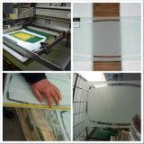 glace de Temepered d'impression givrée par 3-12mm pour la glace d'intérieur de construction