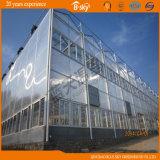 Алюминиевый парник сада листа поликарбоната рамки для томата Hydroponics