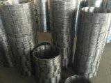 Aço inoxidável 304 do arame farpado Cbt65 da lâmina---Fornecedor da fábrica