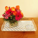 Vari Color e Design Acrylic Serving Tray (HY-YXF004)