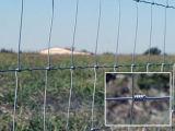 電流を通されたヒツジか農場またはフィールドまたはシカの金網の塀