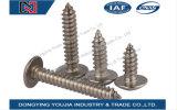 Vis de filetage principales d'armature enfoncées par croix d'acier inoxydable de Jisb1122t