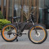 48V脂肪質のタイヤ500W山の電気バイク