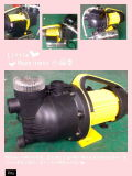 FilterのSteelのステンレス製の庭Jet Automatic Water Pump